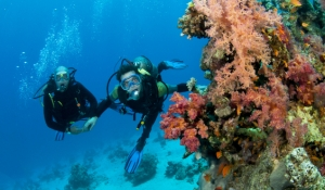 blue-spark-event-design-scuba-diving-spousal-tour-activity