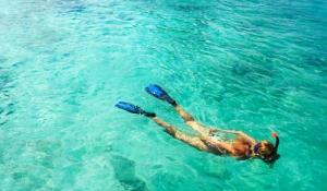 blue-spark-event-design-snorkel-spousal-tour-activity